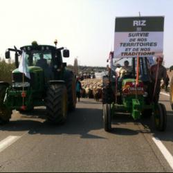 Les emplois agricoles menacés ! Patrick Leveque, secrétaire général de FRSEA en interview sur radio