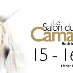 Hebdo semaine 07 : 18e EDITION DU FESTIVAL DU CHEVAL CAMARGUE
